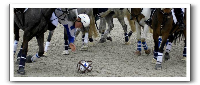 Image: horse-ball22%5B1%5D.jpg