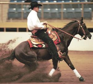 Image: reining.png